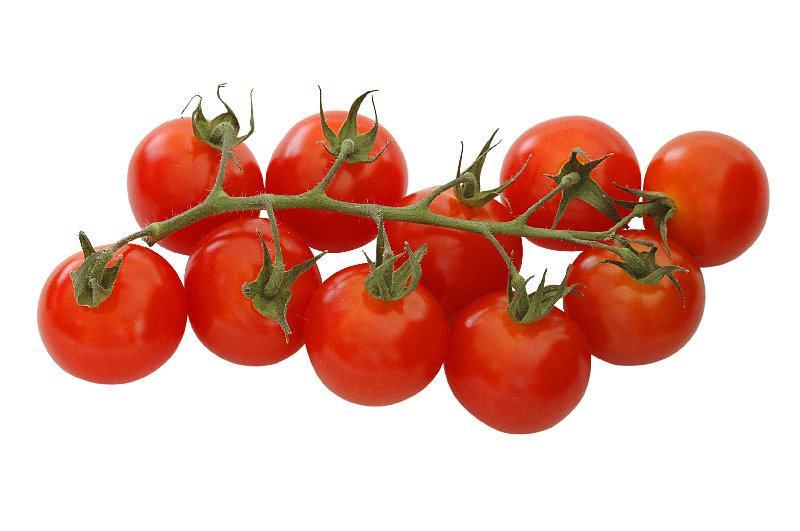 Tomate cerisecherry tomato cayor global business cayor global business - Pied de tomate cerise ...
