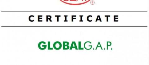 CGBSN Certifié Global G.A.P.